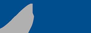 Pues GmbH Steuerberatungsgesellschaft